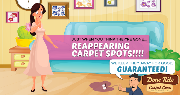 carpet cleaning marketing retargeting ad