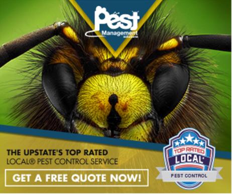 pest control retargeting ad