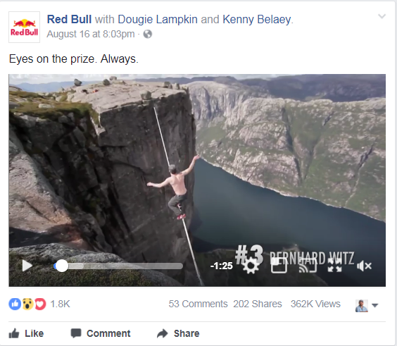 social media management red bull