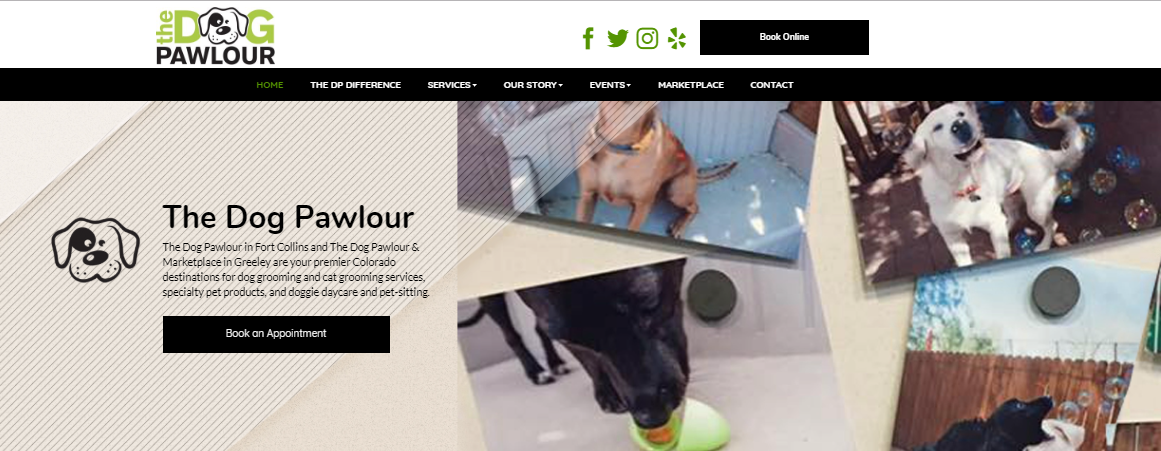 dog grooming case study website homepage