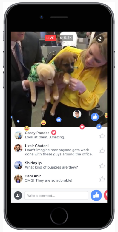 facebook live chat feature