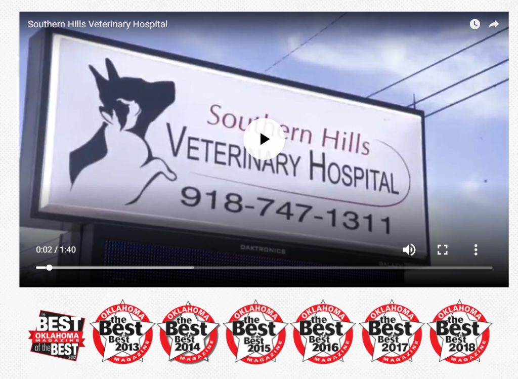 vet case study video and awards