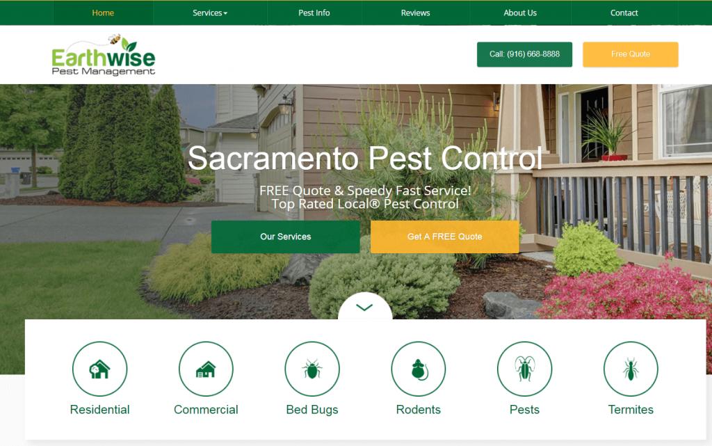 pest control marketing case study website design