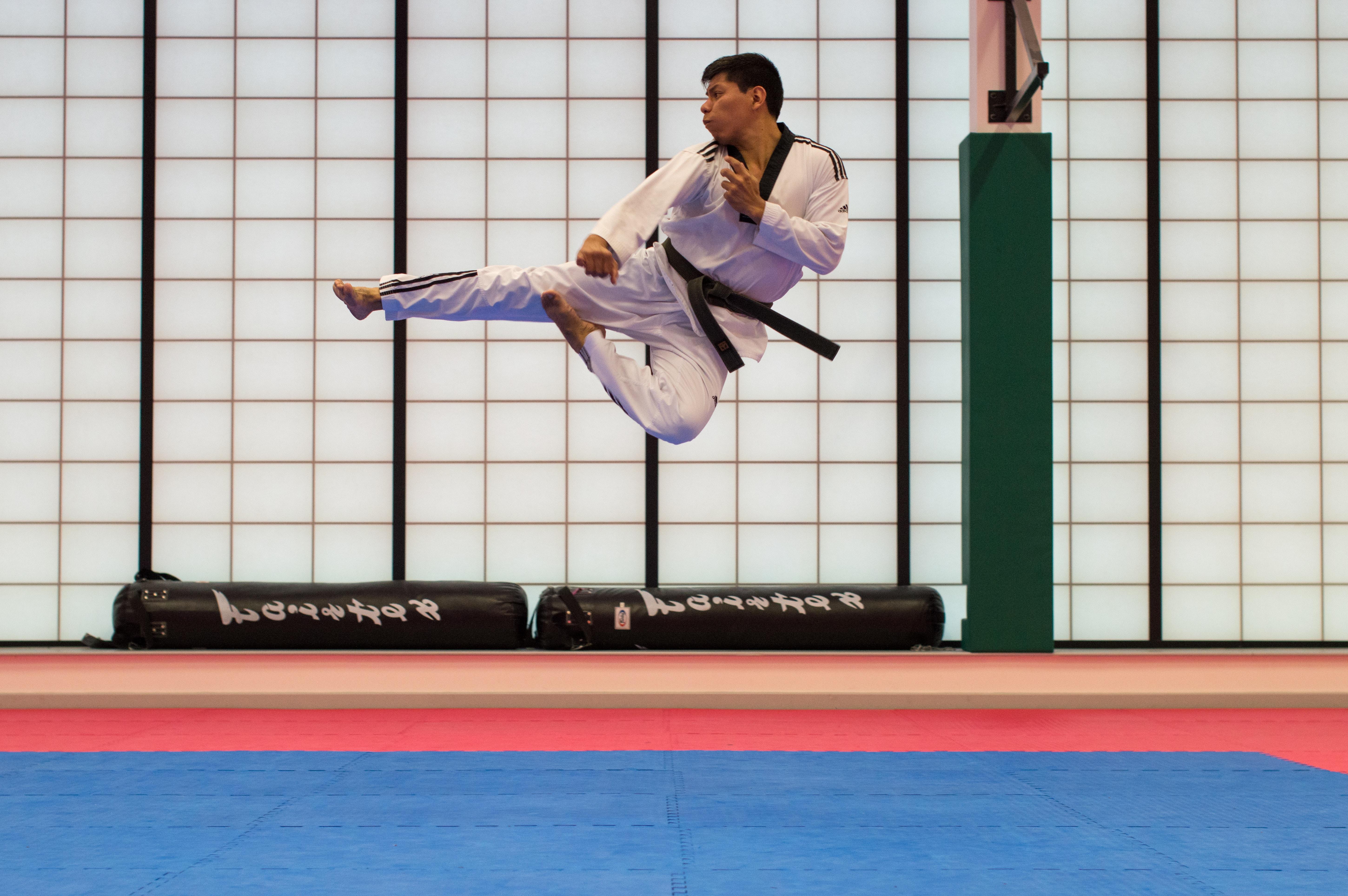 martial arts case study